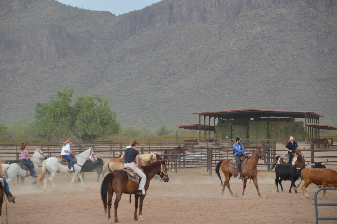 White Stallion Ranch - Tucson