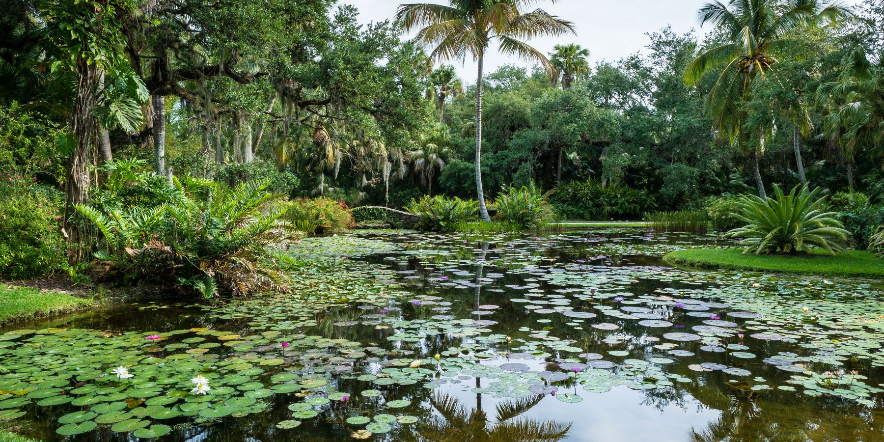Botanische Tuin - Vero Beach - Florida - Doets Reizen