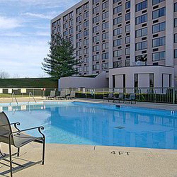 Millennium Maxwell Hotel - pool
