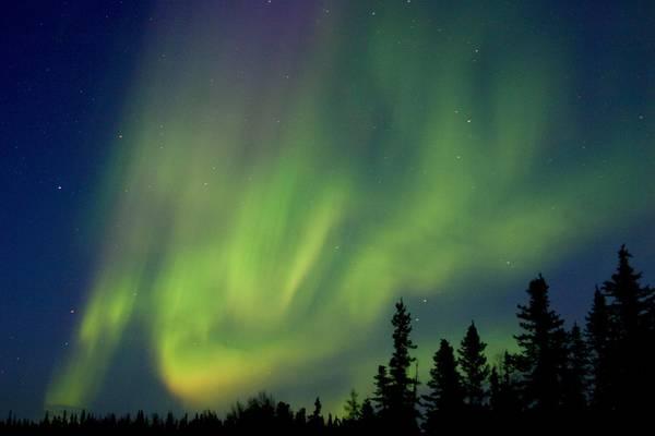 Noorderlicht Churchill - Manitoba - Canada - Doets Reizen