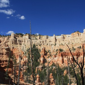 Hiken in Bryce Canyon - Dag 20 - Foto