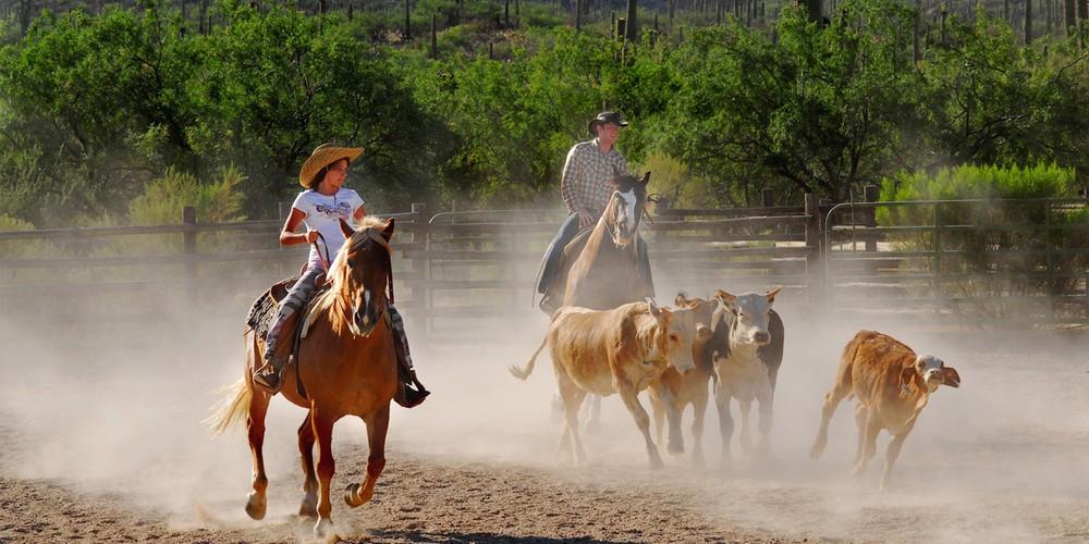Paardrijden op een ranch in Tucson, Arizona