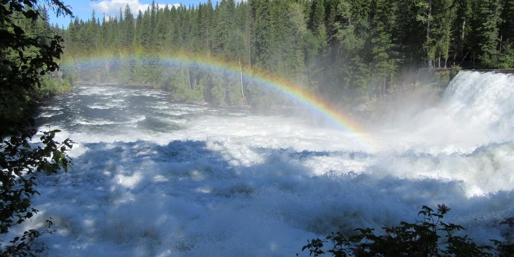 Regenboog Wells Gray Provincial Park