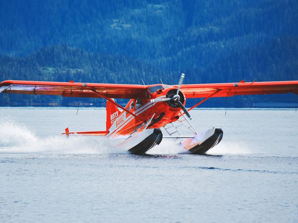 Guided Fishing Adventure by Floatplane - Anchorage - Alaska - Doets Reizen