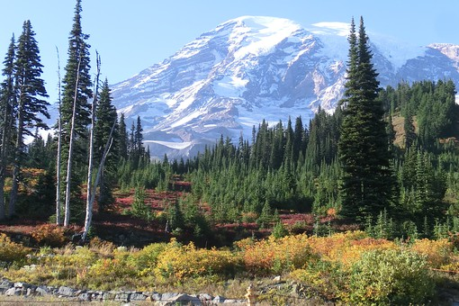 Mount Rainier NP in Washington State