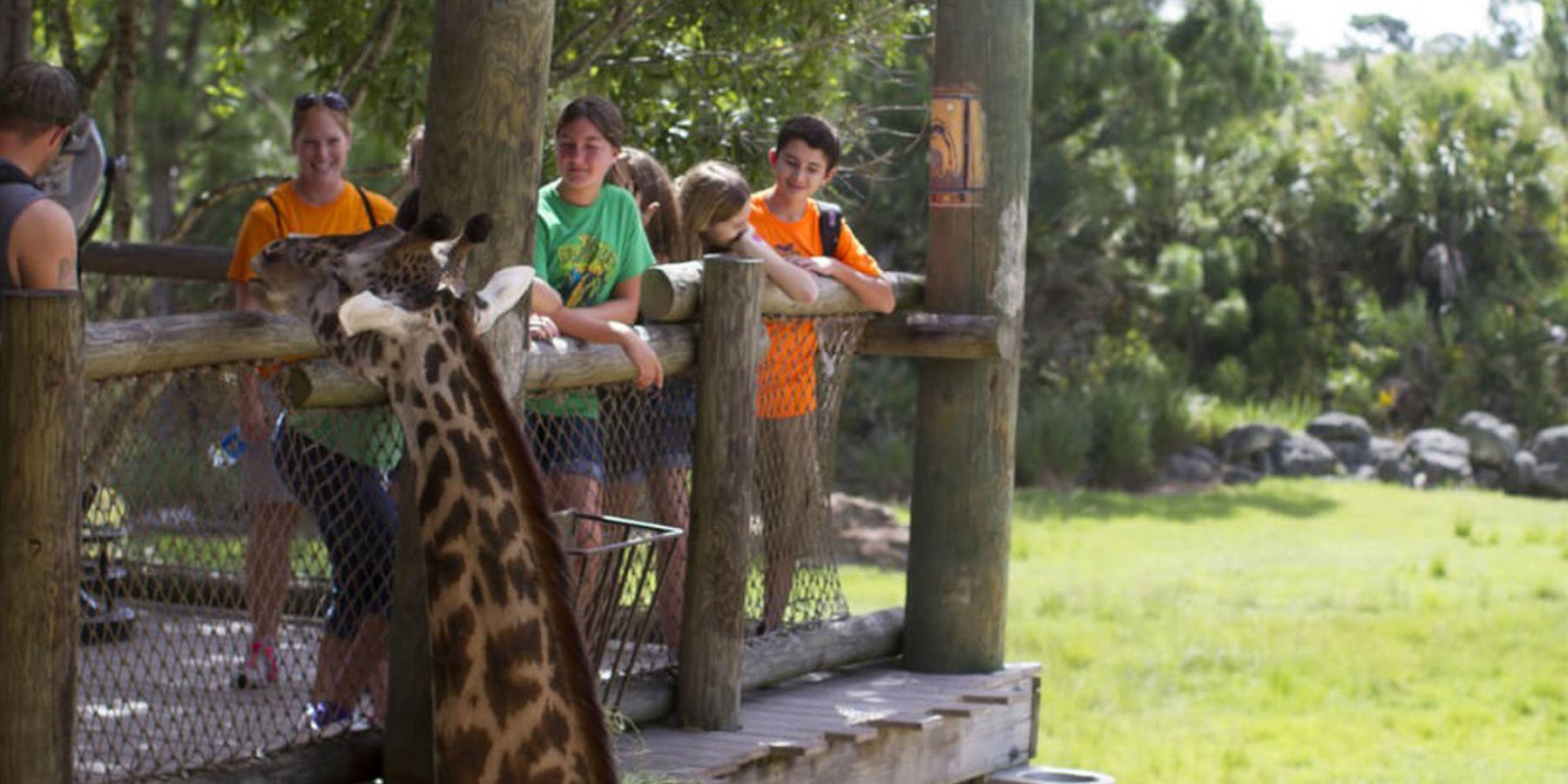 Brevard Zoo - Cocoa Beach - Florida - Doets Reizen