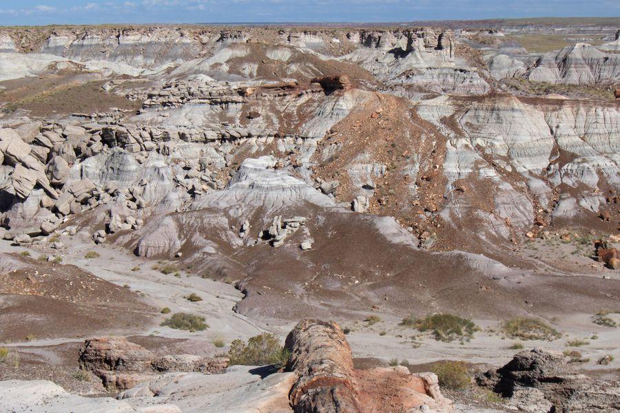 Petrified Forest National Park - Arizona - Amerika - Doets Reizen