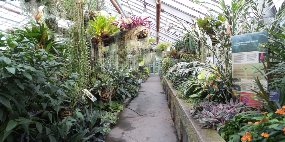 Botanische tuinen - Montreal - Quebec - Canada - Doets Reizen