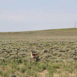 Richting Vernal Utah - Dag 16 - Foto