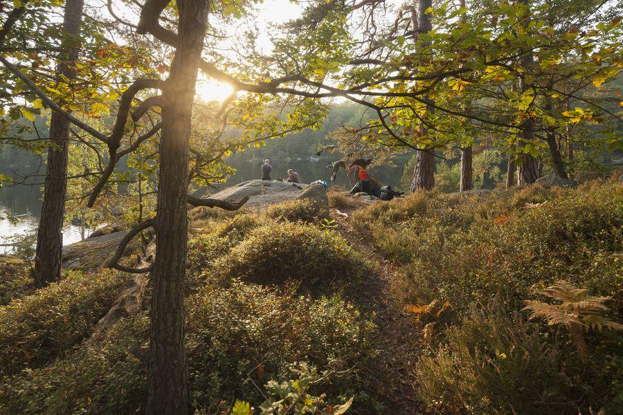 Blekinge - Doets Reizen - Vakantie Zweden - Credtis Visit Sweden