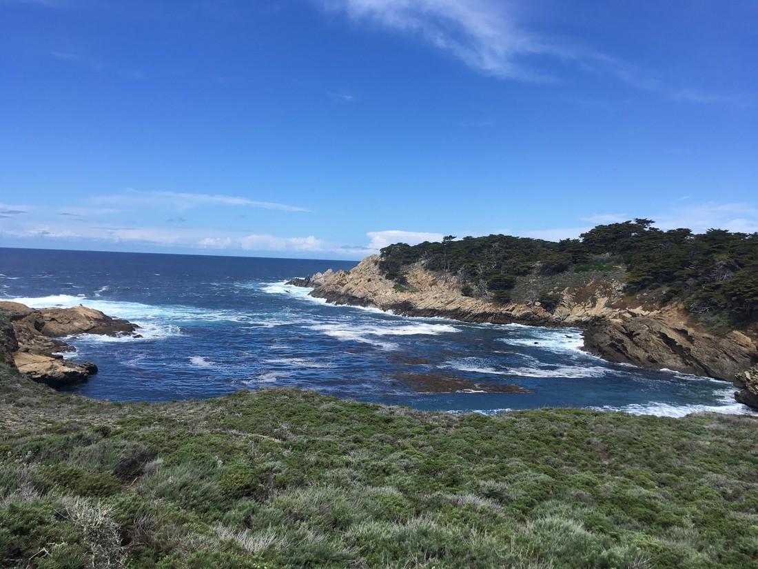 Point Lobos State Park, California
