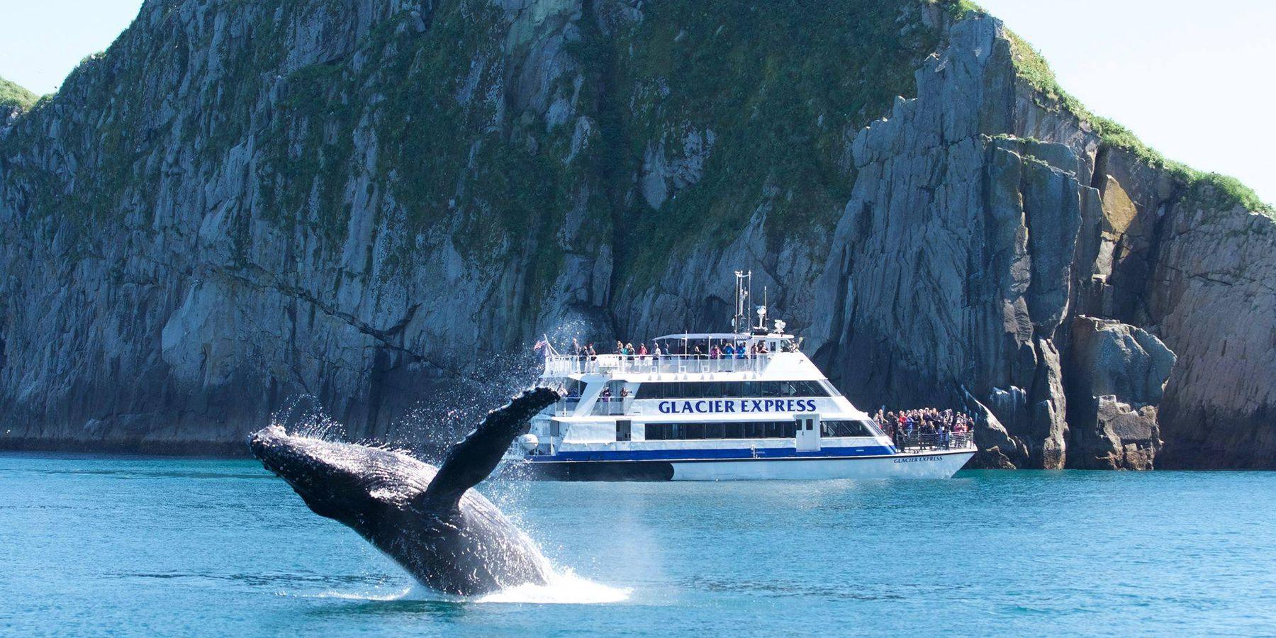 Glacier Cruise Prince William Sound - Alaska - Doets Reizen