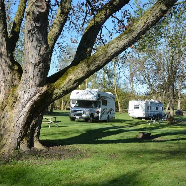 Nicolston Dam RV Park & Campground, sfeer