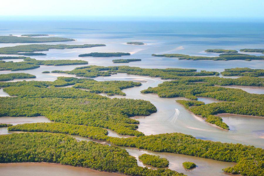 Ten Thousand Islands - Naples - Florida - Doets Reizen