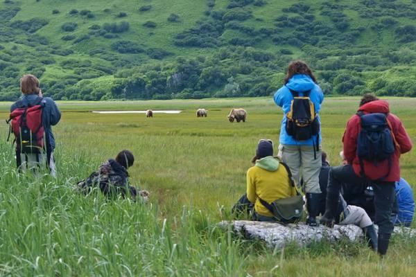 Bear & Wildlife Viewing - Homer - Alaska - Doets Reizen