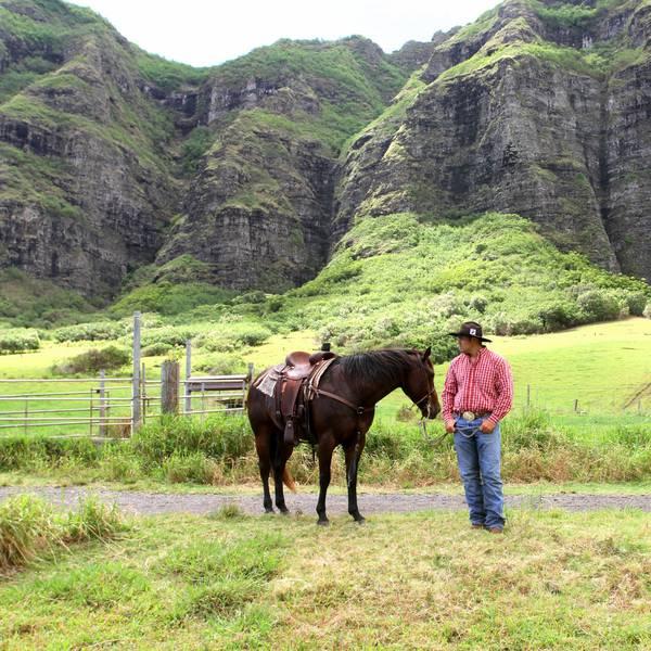 Paardrijden Kualoa Ranch - Oahu - Hawaii - Doets Reizen