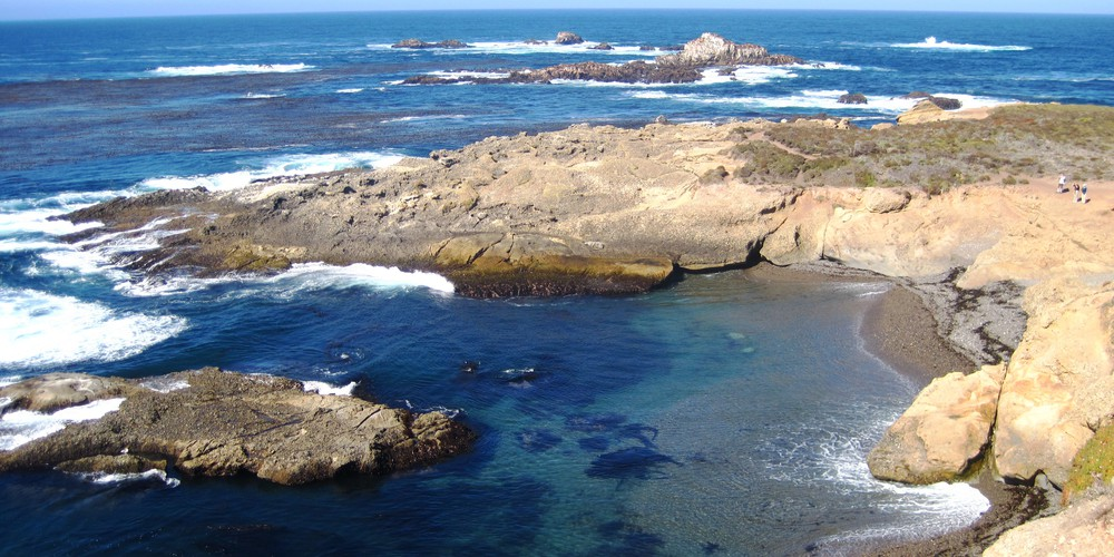 Point Lobos State Reserve in California