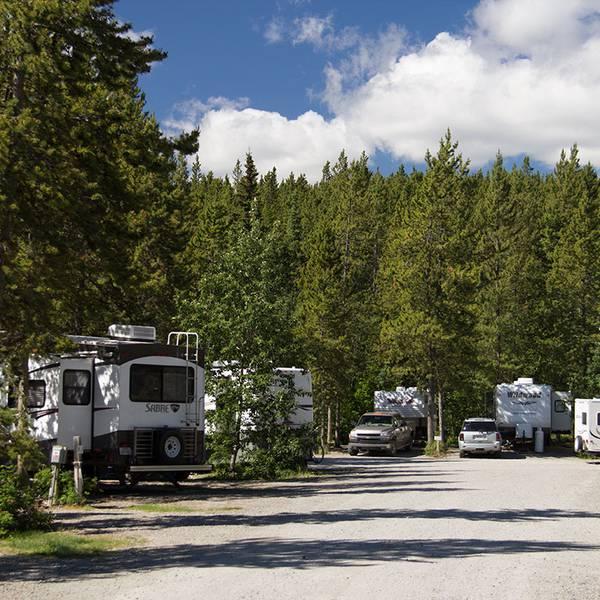 Hi Country RV Park, sfeerbeeld van de camping