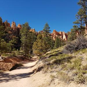 Bryce Canyon National Park - Dag 12 - Foto