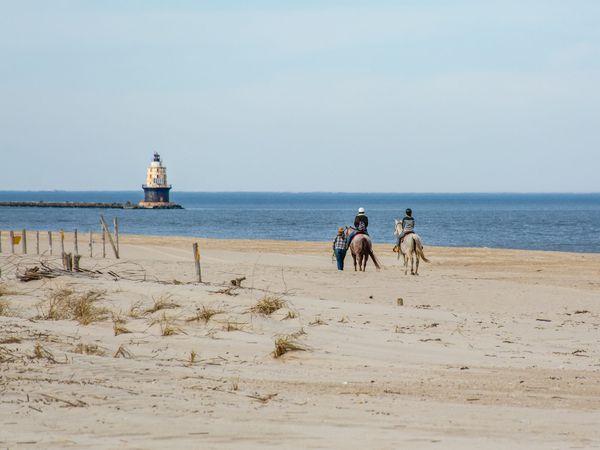 Coast Delaware
