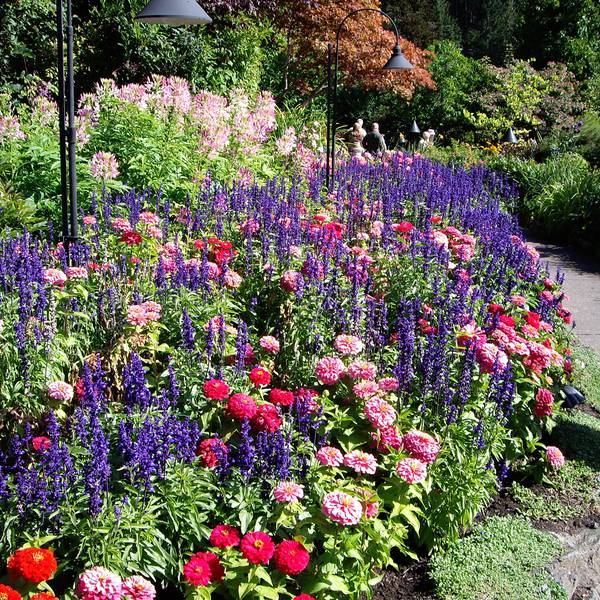 Butchart Gardens - Victoria - Vancouver Island - British Columbia - Canada - Doets Reizen