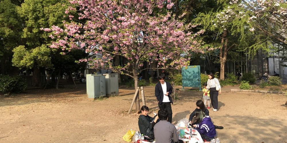Ueno Park - Tokyo - Japan - Doets Reizen