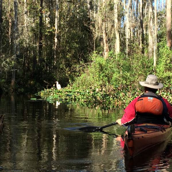 Shingle Creek Orlando Florida