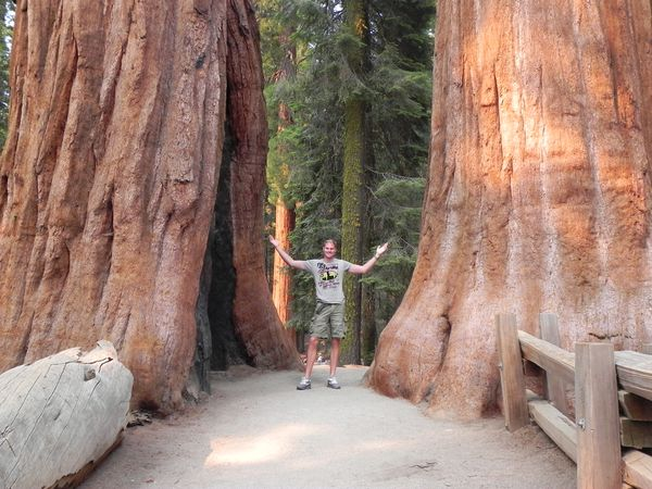 Sequoia National Park - California - Amerika - Doets Reizen