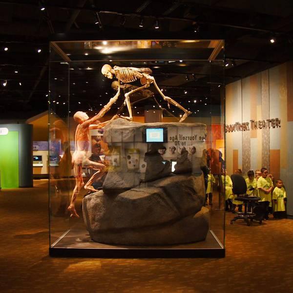 Denver Museum of Nature & Science - Denver - Colorado - Doets Reizen