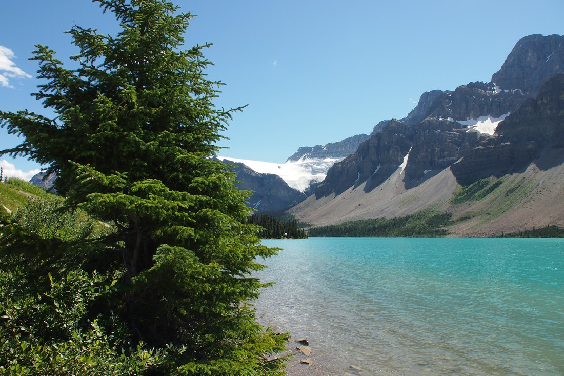 Bow Lake - Icefields Parkway - Alberta - Canada - Doets Reizen