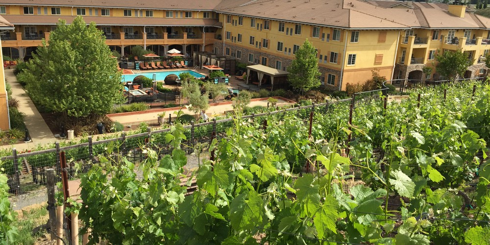 Meritage Hotel - Napa Valley - California - Amerika - Doets Reizen