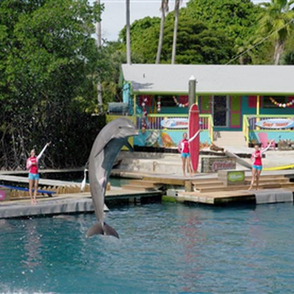 Miami Seaquarium - Florida - Doets Reizen