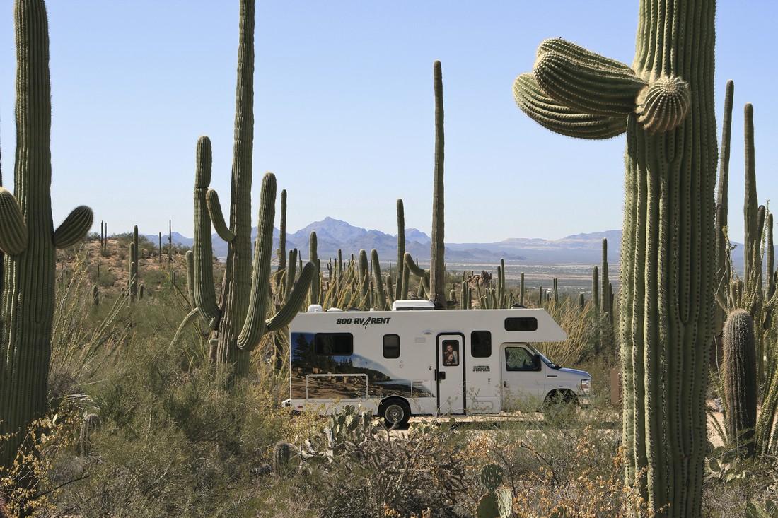 Cruise America Camper in Saguaro NP Arizona