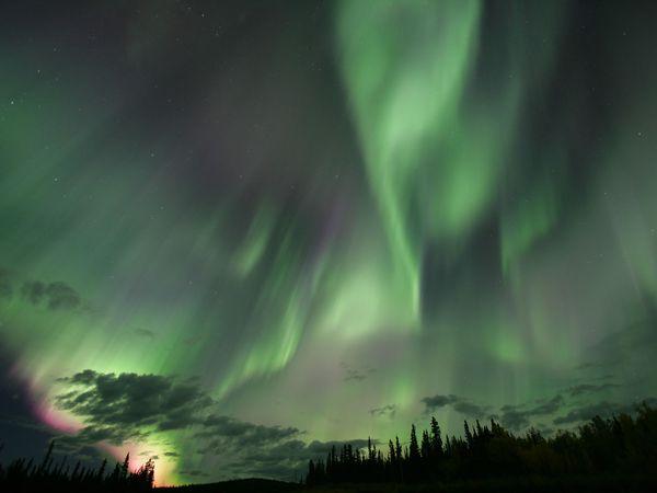 Noorderlicht Yukon - Canada - Doets Reizen
