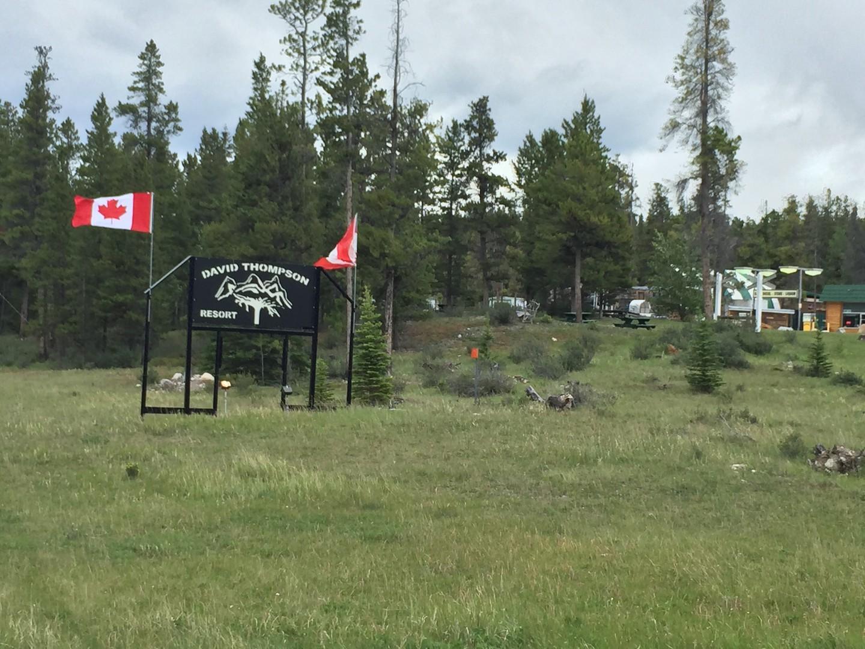 Volledige aansluiting Camping Alberta