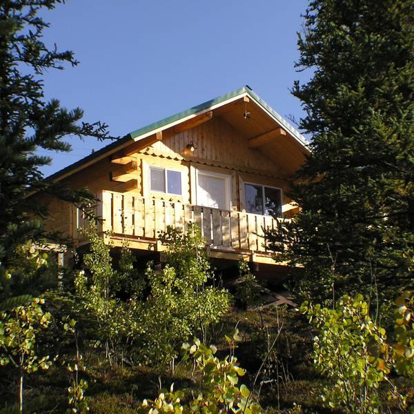 Denali Grizzly Bear Resort - cabin