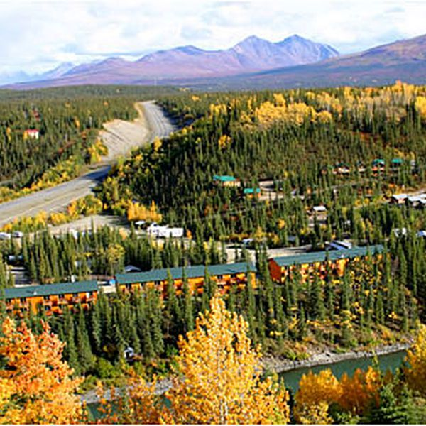 Denali Grizzly Bear Resort - aanzicht