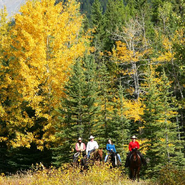 Sundance Loop Ride - Banff National Park - Alberta - Canada - Doets Reizen
