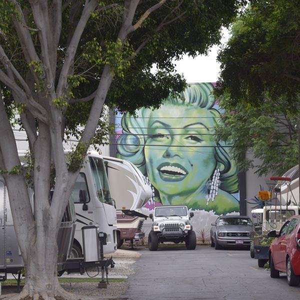 Hollywood RV Park, sfeerbeeld op de camping