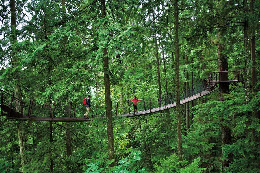 Capilano Suspenion Bridge - Vancouver - British Columbia - Canada - Doets Reizen