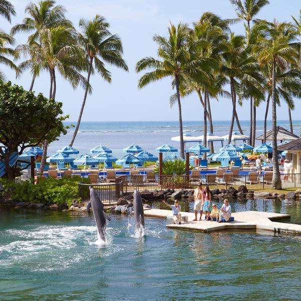 Kahala Hotel and Resort Dolphin