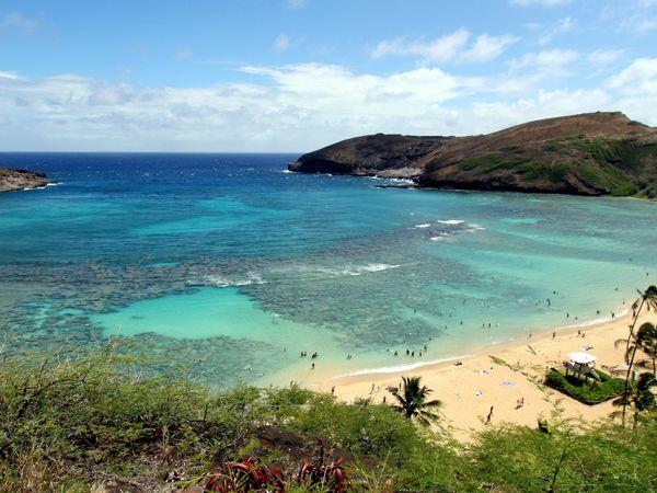 Hanauma Bay Nature Preserve Hawaii Oahu Amerika