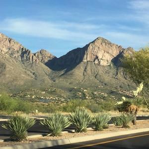 Onderweg naar Tucson - Arizona - Dag 6 - Foto