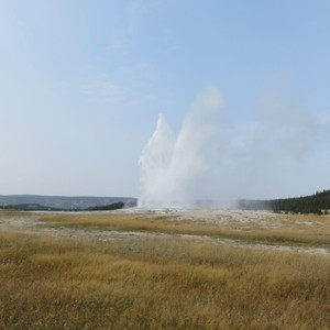 Old Faithful - Dag 7 - Foto