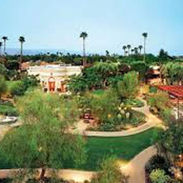 Parker Palm Springs - Tuin
