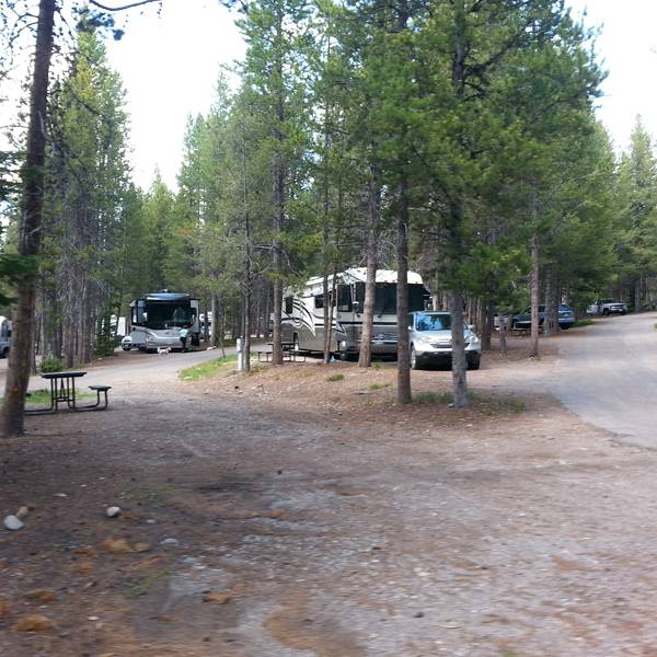 Colter Bay RV Park 3