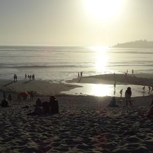 28 juli: oceaan en beessies - Dag 4 - Foto