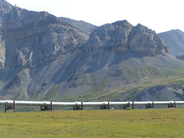 Alaskan Pineline - Fairbanks - Alaska - Doets Reizen