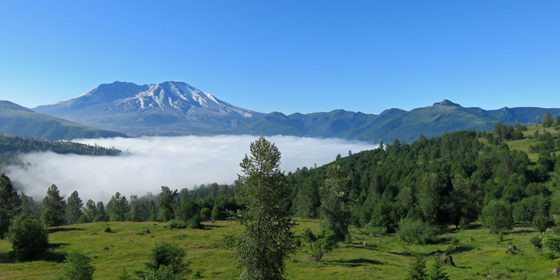 Mount St. Helens National Volcanic Monument - Washington State - Doets Reizen