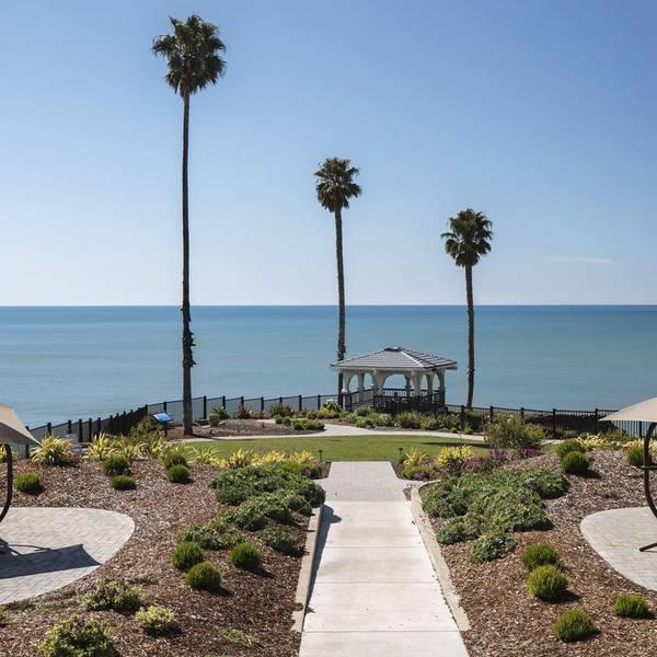 Shore Cliff Hotel - garden